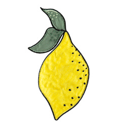 Patch lemon 100x120mm 1 pc