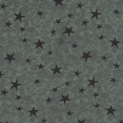 Woven viscose dusty mint w stars